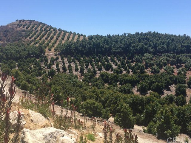 0 Pauma Ridge Road, Pala CA: http://media.crmls.org/medias/d9b9ac50-3276-4f3c-b716-cb872ee53f90.jpg