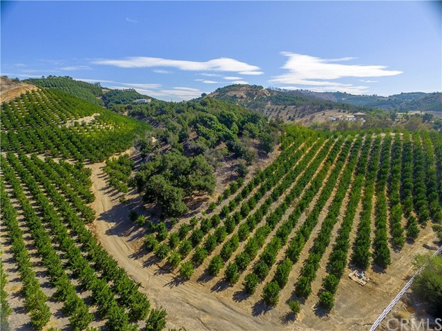 One of Temecula Homes for Sale at 0  Avenida del Oro