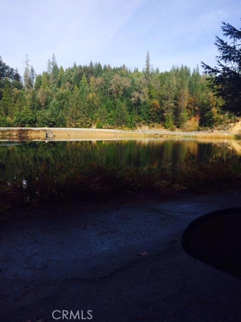 0 Forest Glade, Berry Creek CA: http://media.crmls.org/medias/db0a54ac-96cb-4e73-bed0-a5da066f8575.jpg