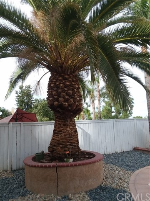 1 Del Fiore Lake Elsinore, CA 92532 - MLS #: PW18264930