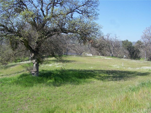 Additional photo for property listing at 0 River Oaks Court  Coarsegold, California 93614 United States