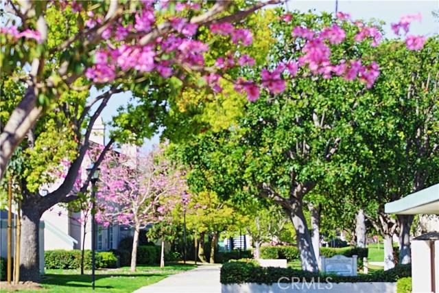 81 Oxford, Irvine, CA 92612 Photo 19