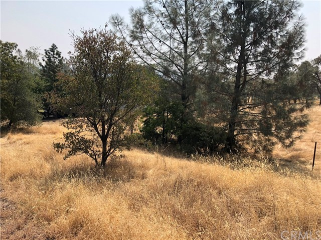 0 Gleness Oroville, CA 0 - MLS #: OR18061803
