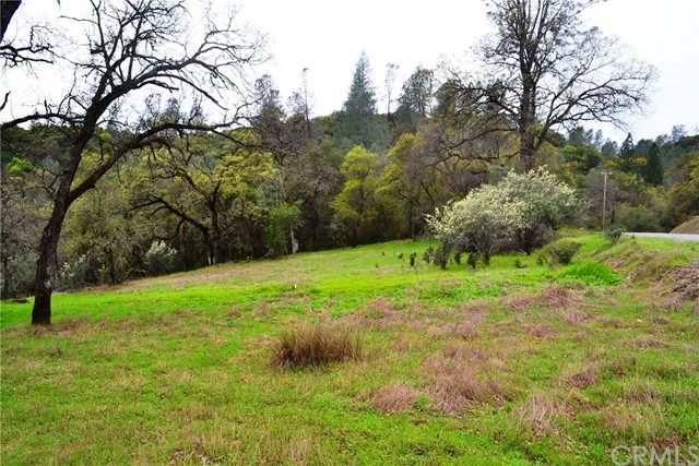 310 Hidden Mine Road Yankee Hill, CA 95965 - MLS #: SN18014613