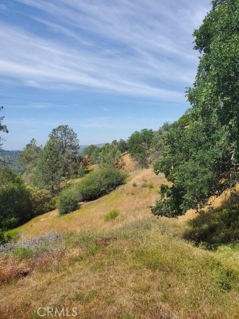 0 Lot 1952 Ranger Circle Drive, Coarsegold CA: http://media.crmls.org/medias/dd1a0929-dc09-4975-8d40-e6448074d13d.jpg