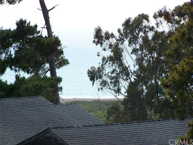 Croyden Lane, Cambria, CA 93428