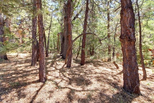 1369 La Crescenta Drive, Big Bear CA: http://media.crmls.org/medias/dd5dd79b-80c3-4043-9f6a-9881d493bda9.jpg