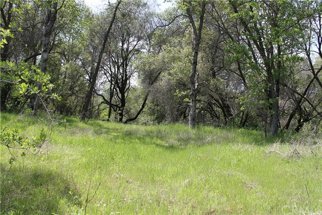 Single Family for Sale at 0 Quail Hill Road Mariposa, California 95338 United States