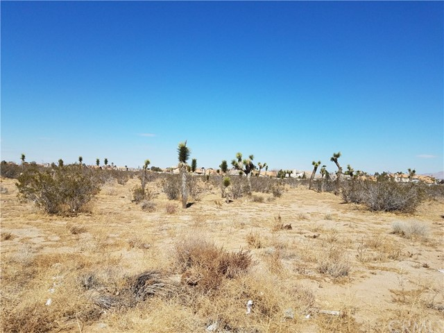 0 Bear Valley Road Victorville, CA 92392 - MLS #: EV18052513