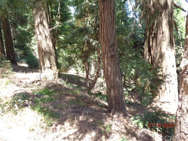 0 Mozundar Drive, Cedarpines Park CA: http://media.crmls.org/medias/def3754c-5a66-4f55-b0b1-35d0e322e3d3.jpg
