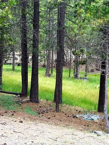 Lot 88 Tamarack Trail, North Fork, CA, 93643