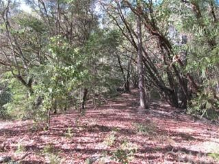 0 Big Basin Way, Outside Area (Inside Ca) CA: http://media.crmls.org/medias/dfd0b5b5-31af-4ab0-b61a-a8595a717552.jpg