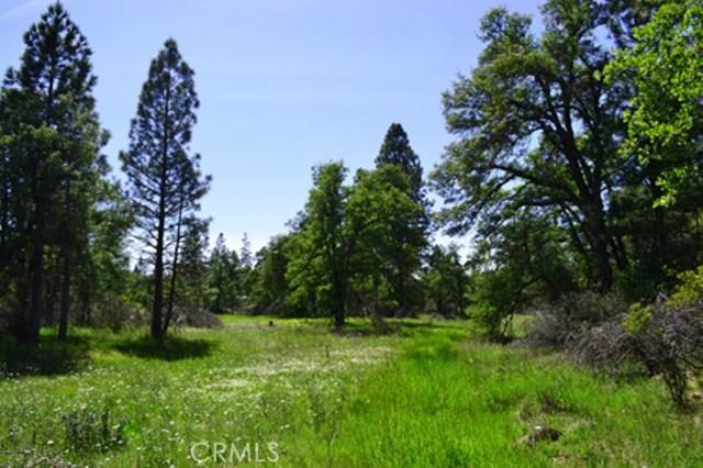 16710 Willow Glen Road, Brownsville, CA 95919