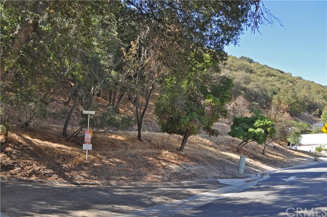 1001  Fern Canyon Road 93446 - One of Paso Robles Homes for Sale
