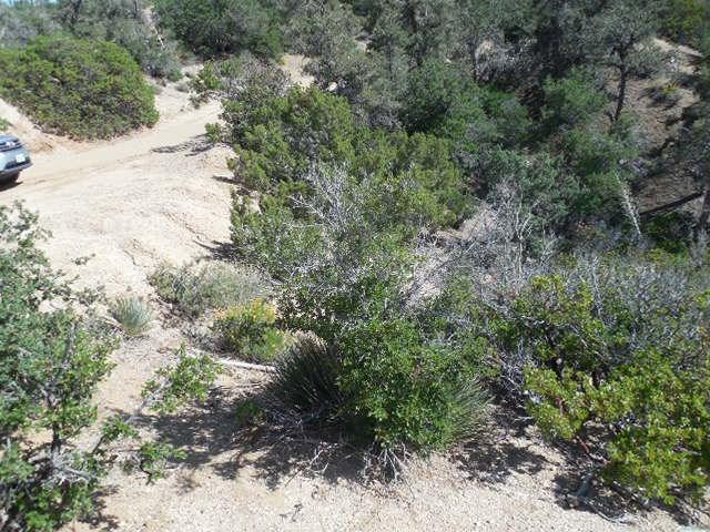 0 Old Oak Springs/Desert Front, Pinon Hills CA: http://media.crmls.org/medias/e4016663-cc27-49dd-bca8-0555504d59ca.jpg