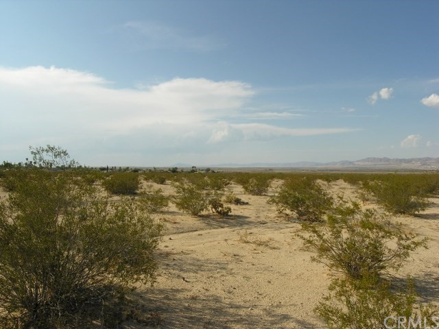 0 Two Mile Road, 29 Palms CA: http://media.crmls.org/medias/e4d555b8-070e-4161-9768-3d56bca855d9.jpg