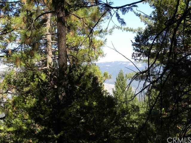 Single Family for Sale at 0 Henness Ridge Road Yosemite, California 95389 United States