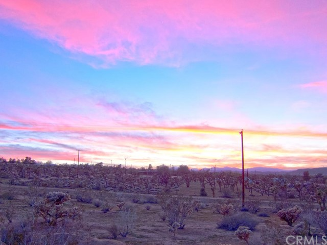 Single Family for Sale at 61400 Division Street Joshua Tree, California 92252 United States