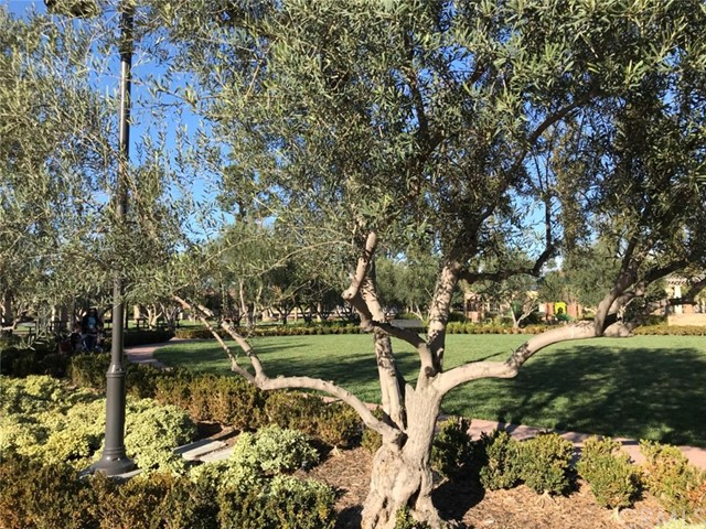 77 Emerald Clover, Irvine, CA 92620 Photo 34