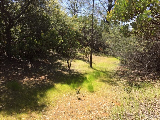 Single Family for Sale at 0 Dollar Road Feather Falls, California 95941 United States
