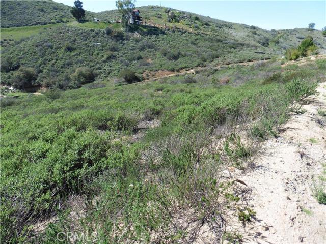 3911 Aspen Road, Fallbrook CA: http://media.crmls.org/medias/e7788f0d-a35e-41ad-9a76-c9694d749e12.jpg