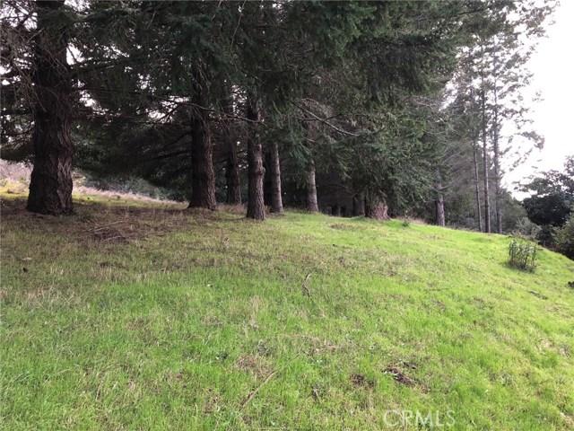 542 Redwood Road, Shelter Cove, CA 95589
