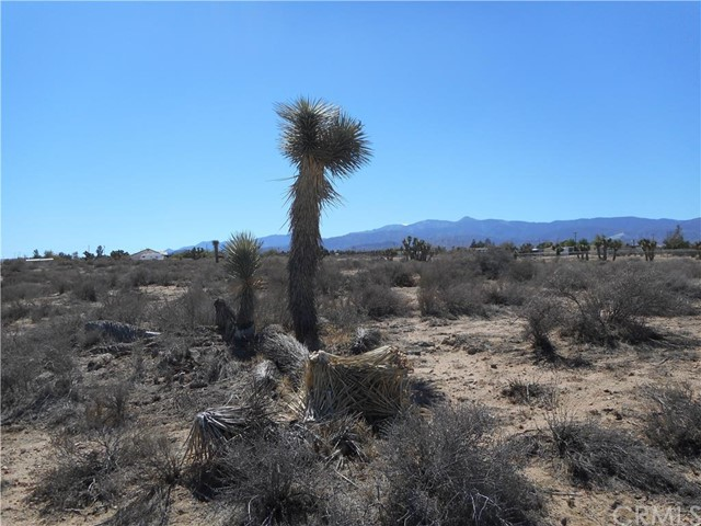 0 Nevada, Phelan CA: http://media.crmls.org/medias/e7d4e4f4-93c7-4d50-aecc-6f0d89ae3674.jpg