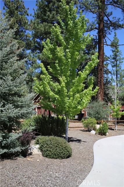 1480 Willow Glenn Court, Big Bear CA: http://media.crmls.org/medias/e8a07bac-7e9e-4fa3-ac64-4e92e14758cf.jpg
