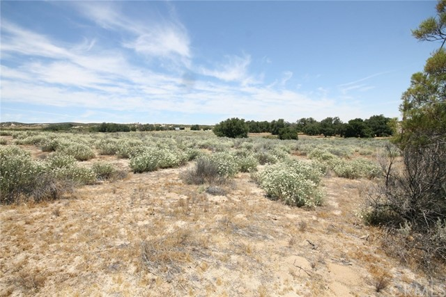 Land for Sale at McCain Valley/Ribbonwood Road Boulevard, California 91905 United States
