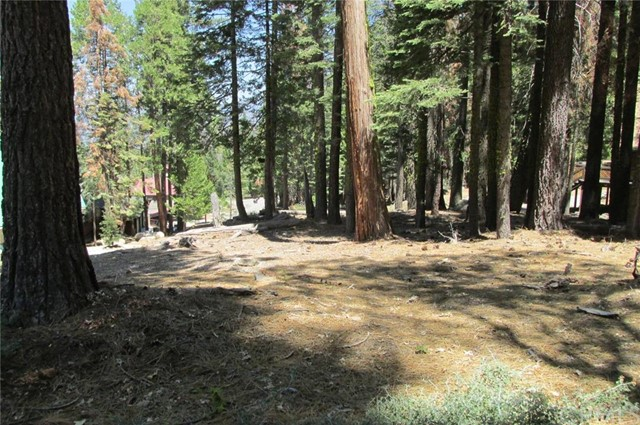 Single Family for Sale at 7497 Henness Circle Yosemite, California 95389 United States