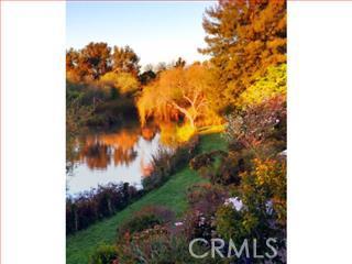 124 TREE FROG Lane, Santa Cruz CA: http://media.crmls.org/medias/e99099d2-98ba-4467-926a-739b1631ec6b.jpg