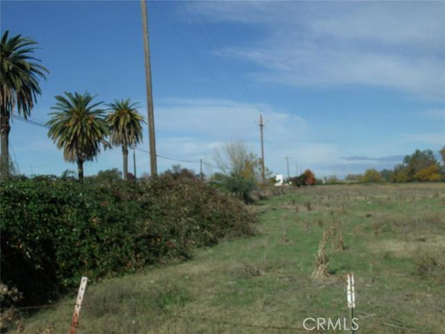 0 Highway 99, Orland CA: http://media.crmls.org/medias/e9e496c7-8eff-4aa2-b0d8-af9353587f93.jpg