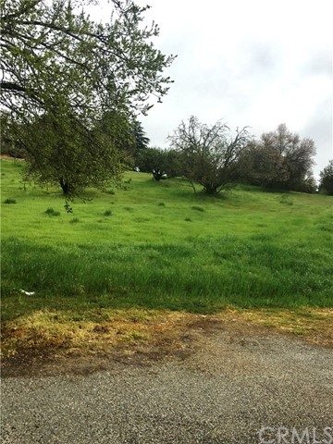 0 Walnut Drive, Paso Robles CA: http://media.crmls.org/medias/ea8aac1f-0694-4565-8fa9-679c402a8176.jpg