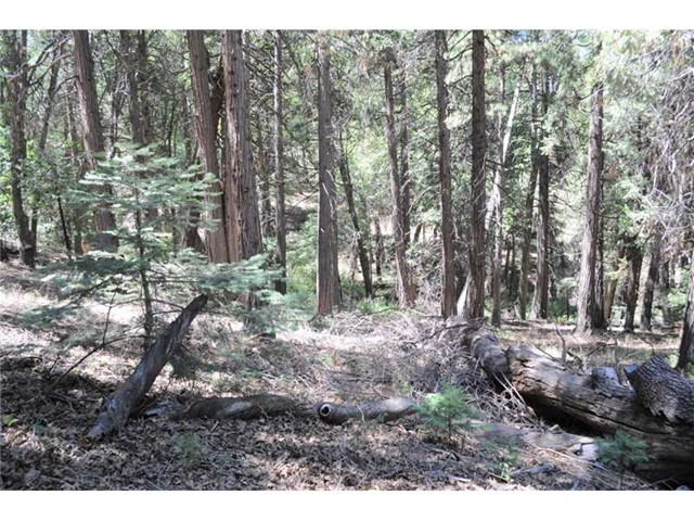 Additional photo for property listing at 0 Mojave River Road Cedarpines Park, California United States