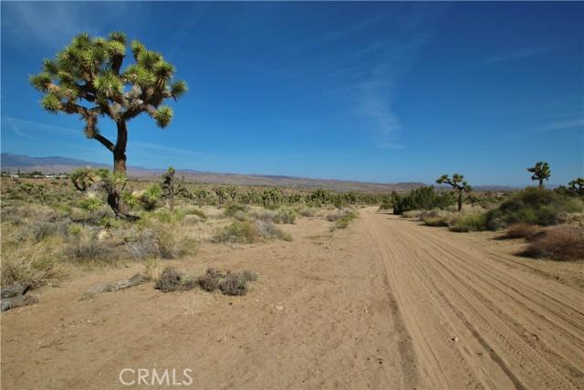 1234 Indio Avenue, Yucca Valley CA: http://media.crmls.org/medias/eb5ffb58-390a-4fe2-aa21-88ecfe5e8f35.jpg