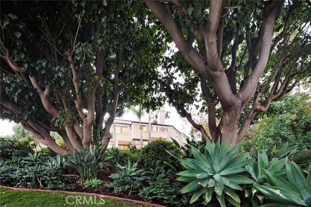 31881 Peppertree, San Juan Capistrano CA: http://media.crmls.org/medias/ec4b501b-54f6-4793-ad9d-78c0442762bb.jpg