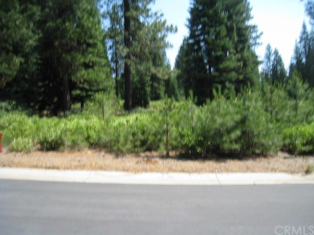 Single Family for Sale at 150 Long Leaf Pine Lane Lake Almanor, California 96137 United States