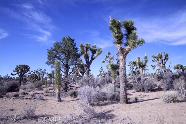 45447 Burns Canyon Road, Pioneertown CA: http://media.crmls.org/medias/ec912b62-70d0-44a0-8453-b4d3005c0fe7.jpg