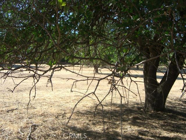 15675 Eagle Rock Road, Hidden Valley Lake CA: http://media.crmls.org/medias/ed0449ab-61f4-4f45-8ef2-326fe39bab7e.jpg