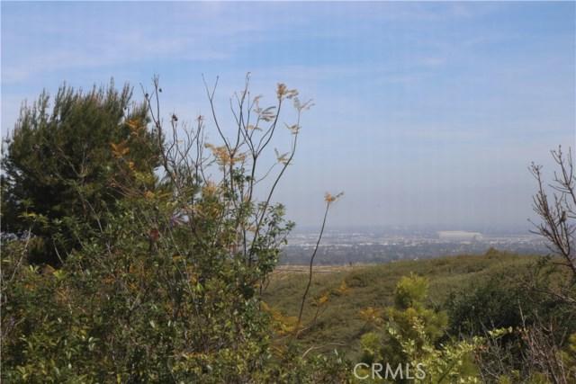 53 Trumpet Vine, Irvine, CA 92603 Photo 16