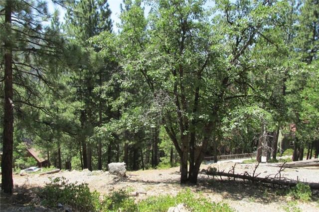7325 Yosemite Park Way Yosemite, CA 95389 - MLS #: FR18123926