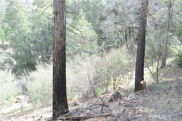 0 Mojave River Road, Cedarpines Park CA: http://media.crmls.org/medias/eda4be3e-5563-4ece-b31d-a40ce19091c1.jpg