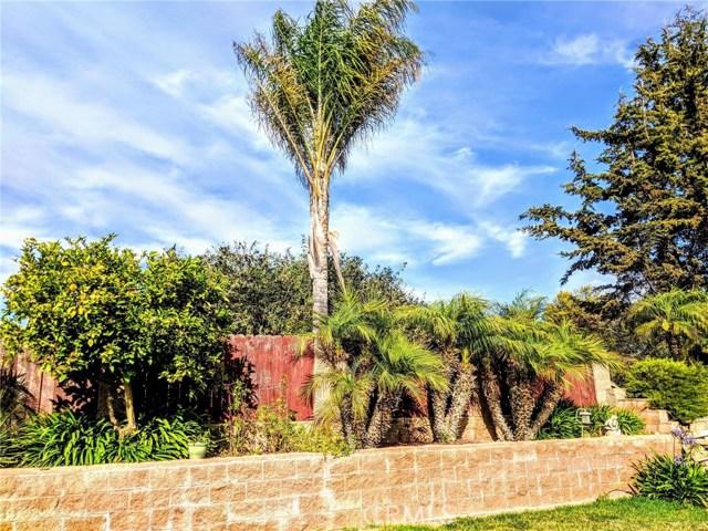 240 Daffodil Avenue, Nipomo CA: http://media.crmls.org/medias/eea8bbb8-56aa-4d2f-a03b-2676e11cc41b.jpg