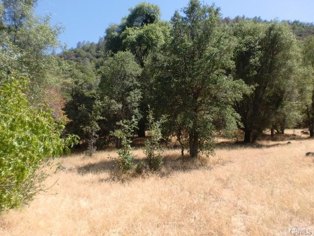0 Apache Ranch Road Ahwahnee, CA 93601 - MLS #: FR18119932
