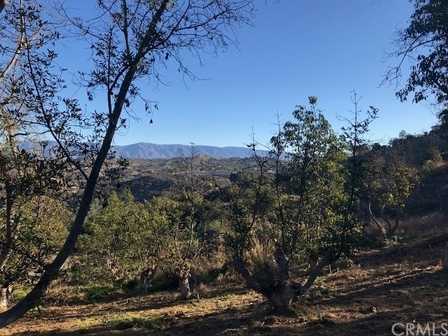 20 Acres Cougar Pass Escondido, CA 0 - MLS #: SW18108677