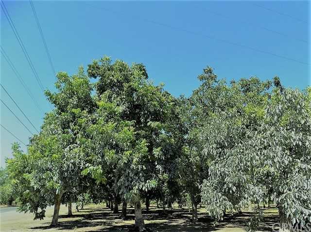 Land for Sale at 3955 W Sacramento Avenue Chico, California 95973 United States