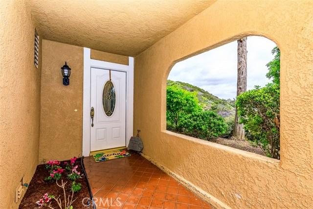 32311 Linda Vista Lane, Dana Point, CA 92629