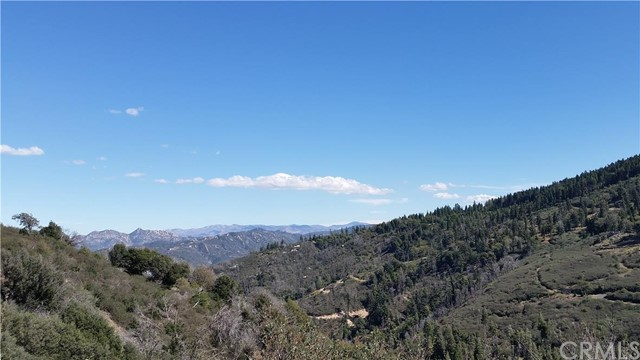 Additional photo for property listing at 319 Cedar Lake Drive  Cedarpines Park, California 92322 United States