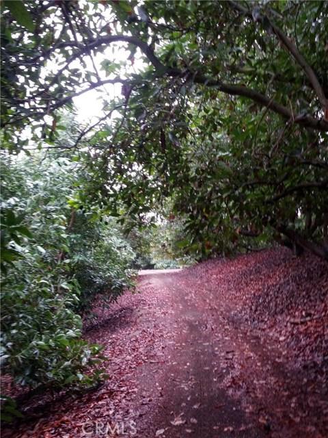 46501 El Prado Road, Temecula, CA 92590 Photo 2