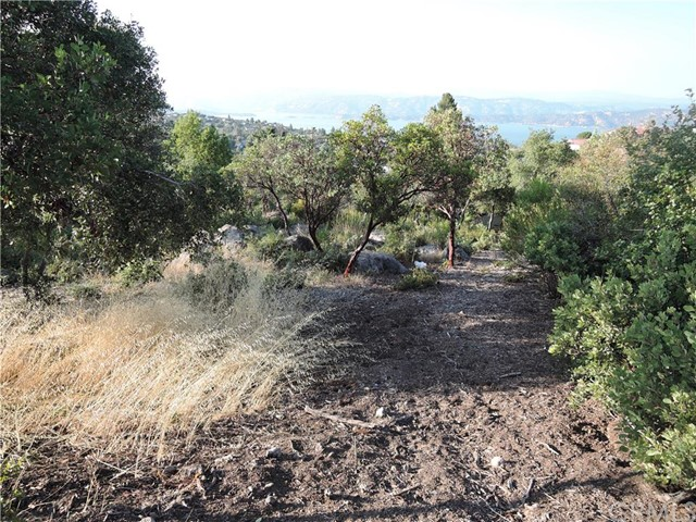 Additional photo for property listing at 9622 Marmot Way Kelseyville, California United States